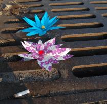 Paper Flower Street Art Allston Boston Gabrielle Peck