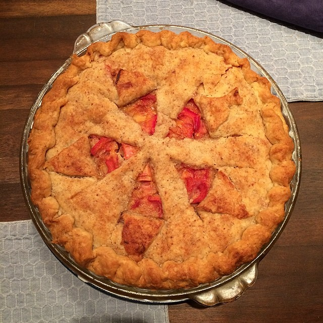 Mom's first rhubarb pie of the year! :D