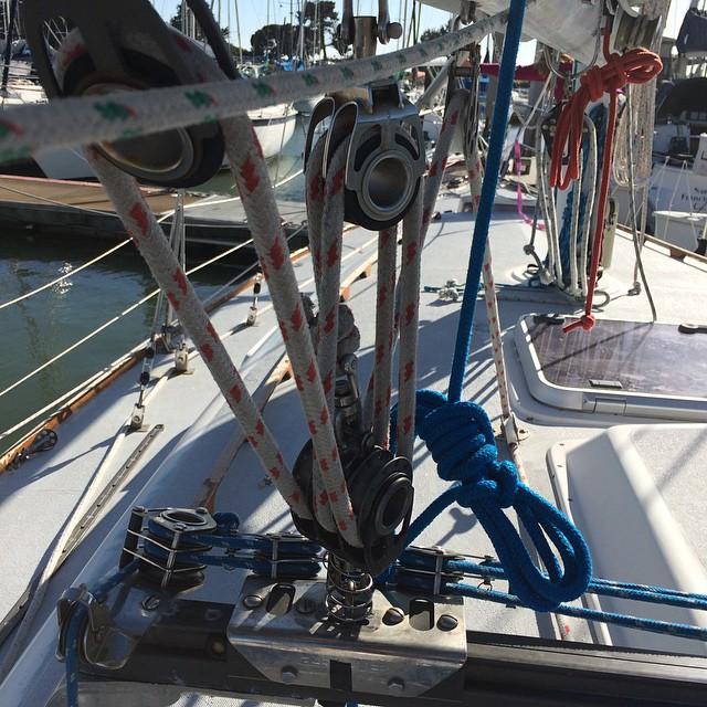 Sea Star for Friday night racing