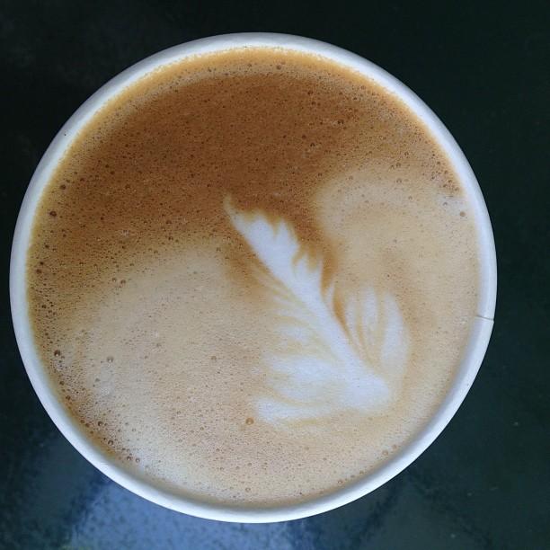 Succulent latte