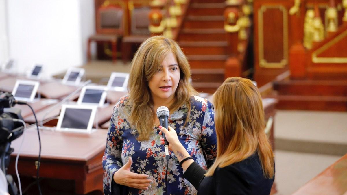 Nueva Ley de Participación Ciudadana que intenta imponer el grupo mayoritario en el Congreso de la CDMX restará derechos a los ciudadanos: Dip. Salido Magos