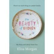 beauty-of-broken