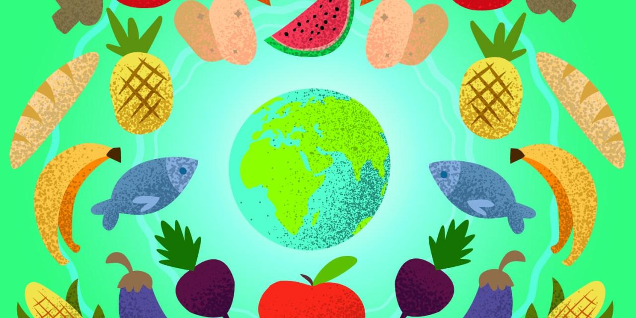 Plato Del Bien Comer Herramienta Para La Salud Gaceta Fm