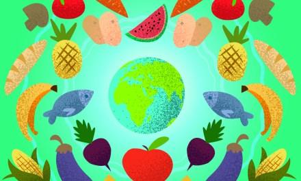 Plato del bien comer: herramienta para la salud