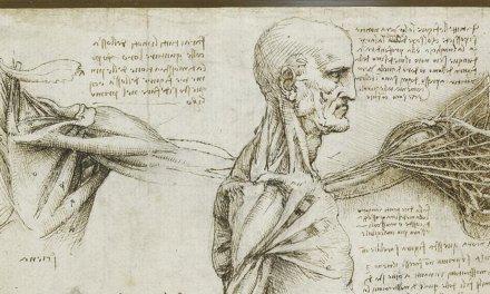 Leonardo da Vinci y el conocimiento anatómico