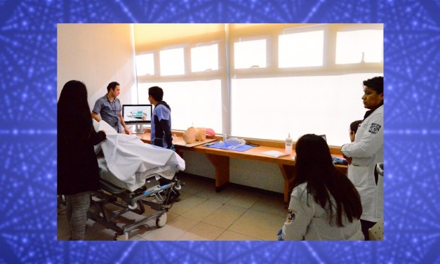 Integración de la simulación al currículo