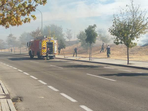 incendio_parque_manolito_gafotas_carabanchel_1