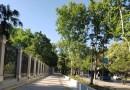 'Habitat Madrid' propone una visita guiada gratuita con los cinco sentidos por el Paseo del Prado