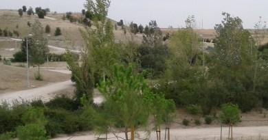 El Ayuntamiento de Madrid rehabilita el parque de la Gavia y plantará 441 árboles y 1.000 arbustos