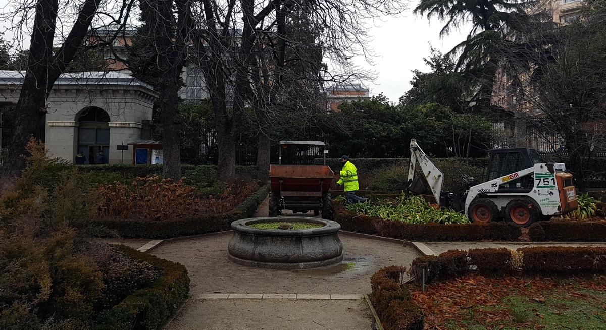 El real jard n bot nico comienza las obras de remodelaci n for Precio entrada jardin botanico madrid