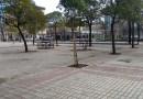 La Ayuntamiento de Madrid rehabilitará la Plaza de la Asociación y tres zonas verdes en Oligisto