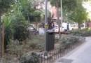 Comienza la segunda fase de rehabilitación de las zonas verdes del Parque de las Avenidas