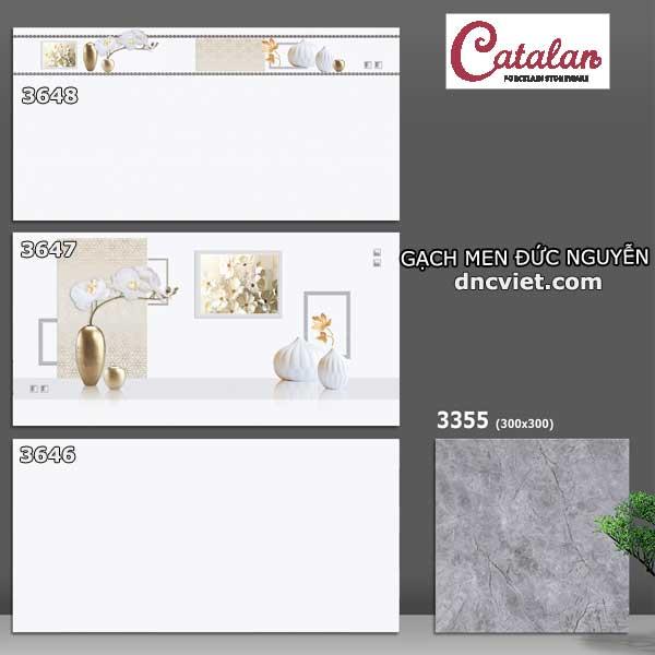Bộ gạch ốp tường 30x60 catalan 3646