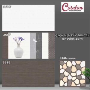 Bộ gạch ốp tường 30x60 catalan 3685