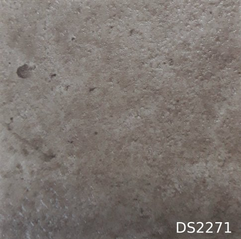 DS2271
