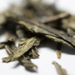Green tea-magnolia-close-up