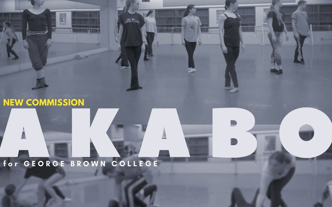 New Gadfly Commission for George Brown College – AKABO