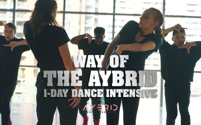 Way of the Aybrid