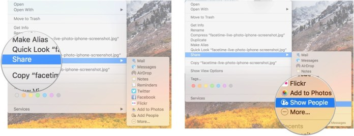 How to share file using iCloud drive