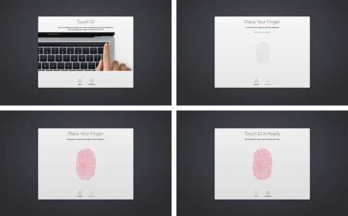 How does Touch ID work