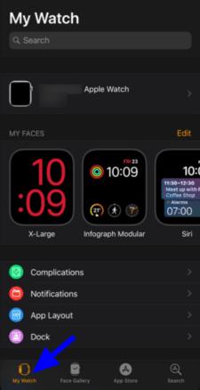 use Dock on Apple Watch