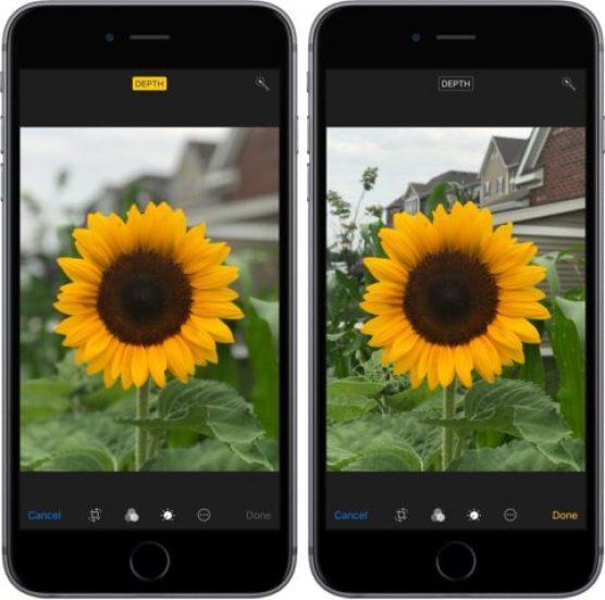 Use Portrait Lighting on iPhone