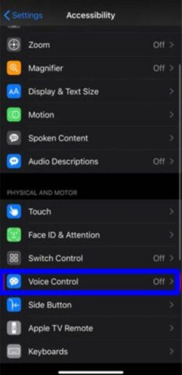 Use Voice Control