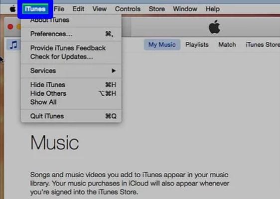 Update iTunes on the Mac