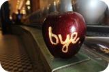 sayd bye Steve Jobs 01