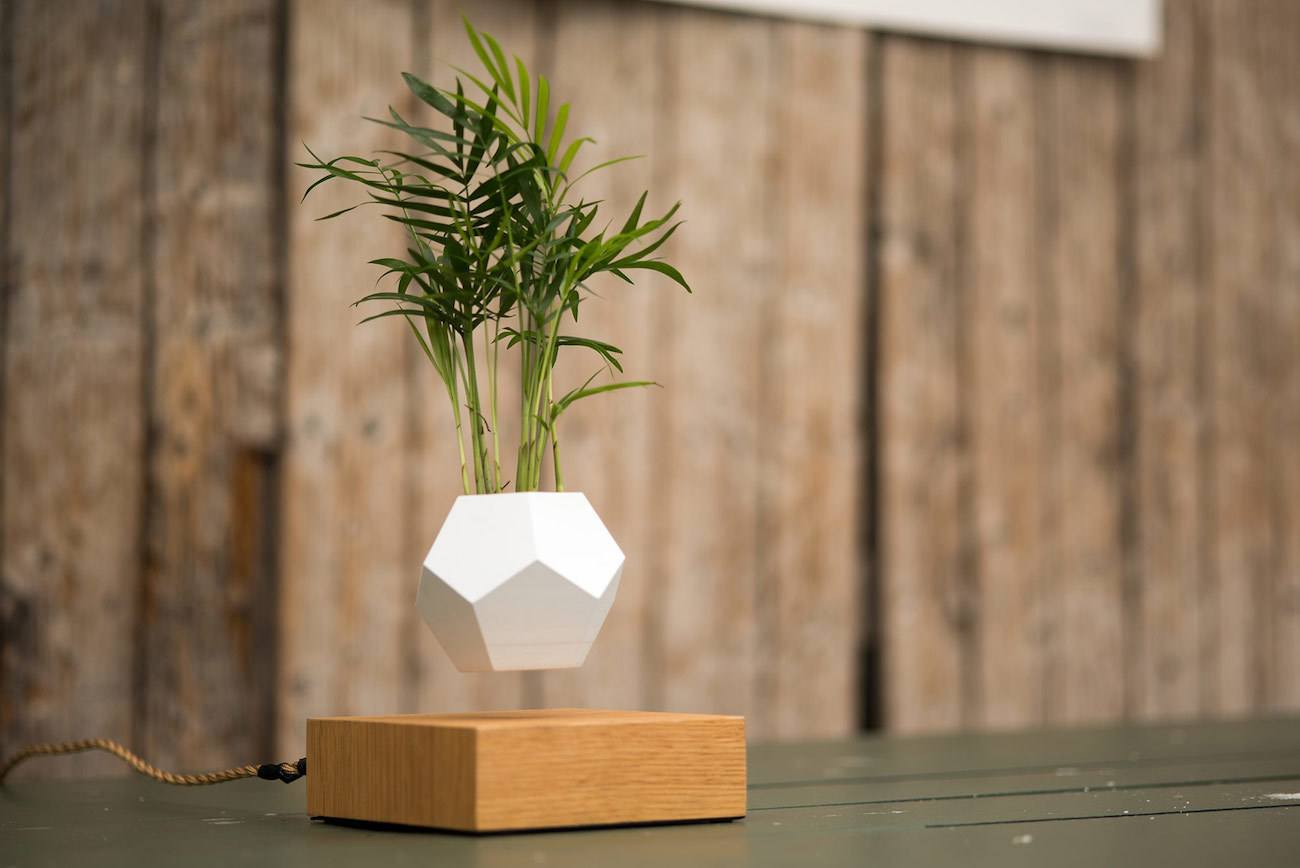 Lyfe Floating Plant Pot