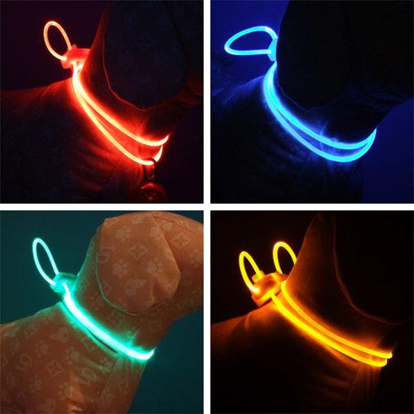 LED Hundehalsband Vorschau
