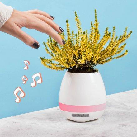 Bluetooth Blumentopf Vorschau