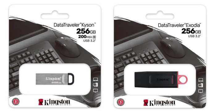 Kingston DataTraveler Kyson Exodia