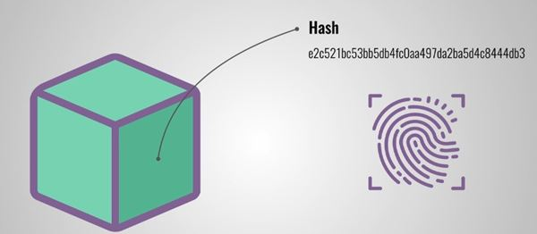 How does Blockchain Technology Work hash Code