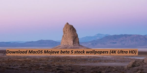 Download Macos Mojave Beta 5 Stock Wallpapers 4k Ultra Hd