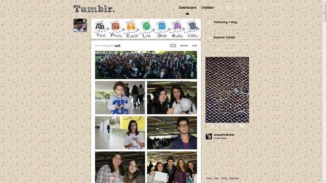Cute & Vintage Flowers 49 Useful Tumblr dashboard theme for Tumblr User