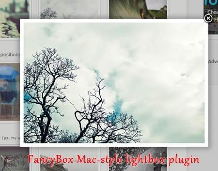 FancyBox Mac-style lightbox plugin