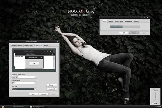 NOOTOR___nooto_GTK 55 most Beautiful free Window XP Themes and Visual Styles