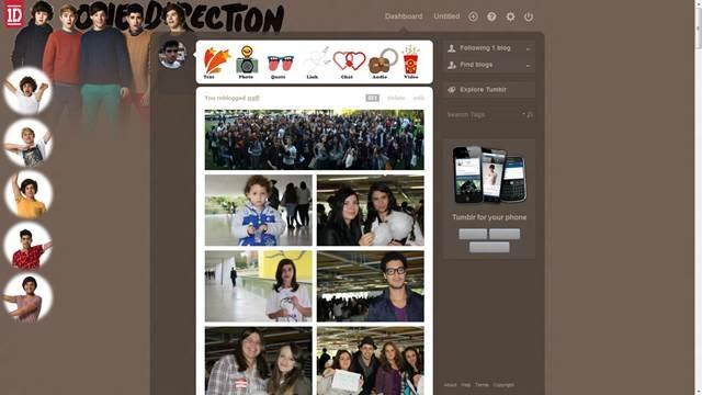 One Direction 49 Useful Tumblr dashboard theme for Tumblr User