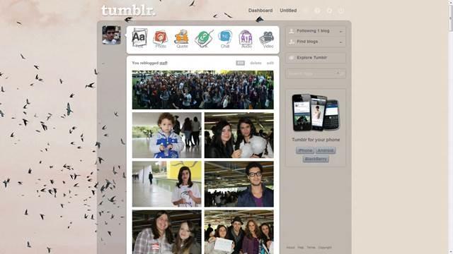 PINK BIRDIES - seity 49 Useful Tumblr dashboard theme for Tumblr User