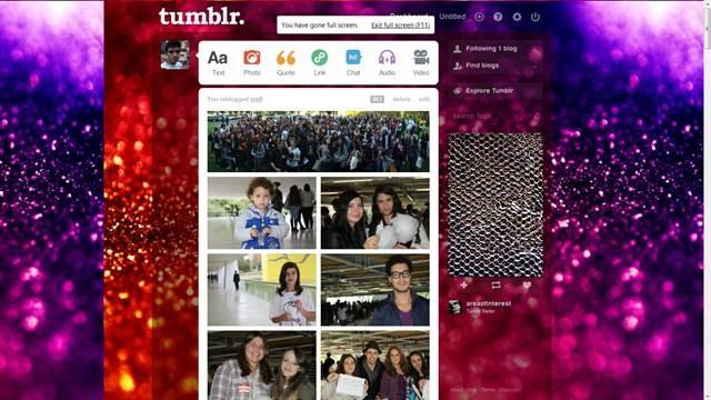 Vivid HQ Glitter 49 Useful Tumblr dashboard theme for Tumblr User