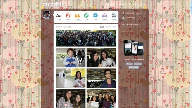 cute ducks and hearts 49 Useful Tumblr dashboard theme for Tumblr User