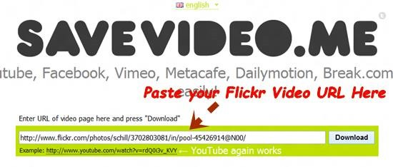 paste Flickr Video url How to Download Videos from Flickr [Quick Tips]