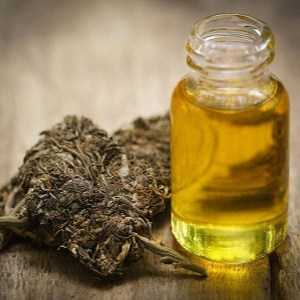 what states is hemp oil legal in