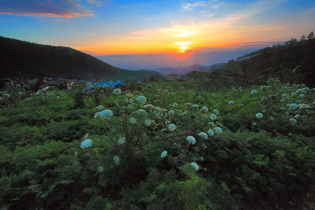 Kawasan Tawangmangu Solo
