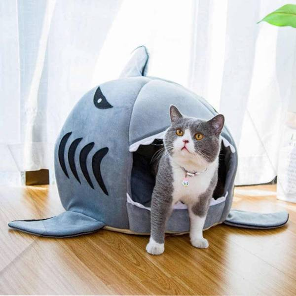 Winter Warm Shark Pet House Gadkit