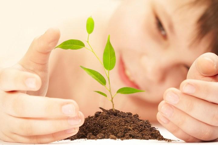 Kinder und Pflanzen | © panthermedia.net /cookelma