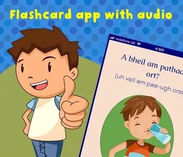 Flashcard app
