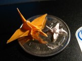 Two Origami Cranes on a Quarter