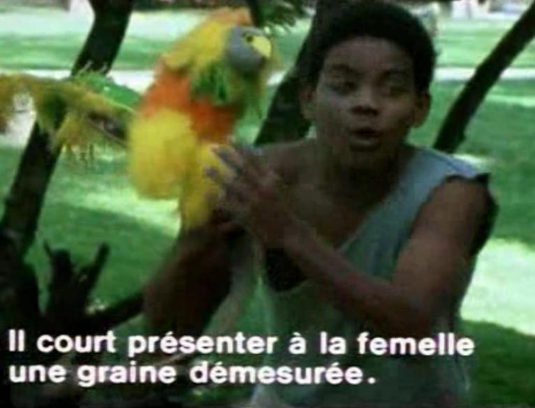 Scène du film Elvis Gratton: sous ce pelage d'oiseau exotique se cache un rat